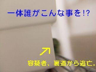b0082757_8221986.jpg