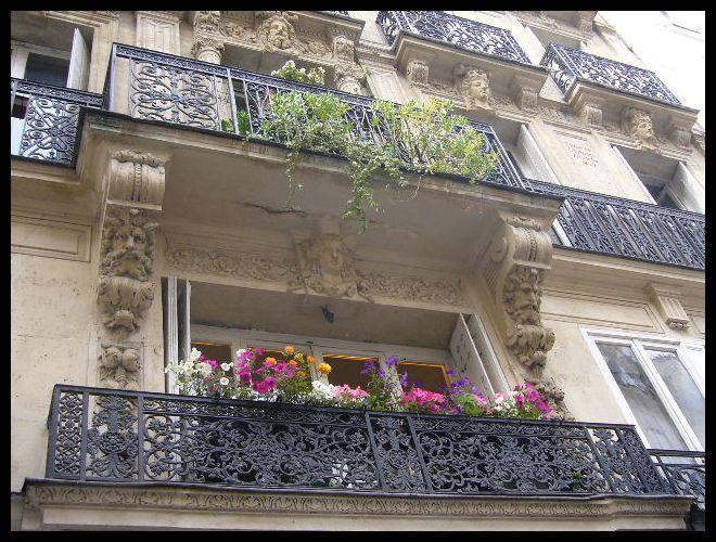 ■窓(パリ)_a0008105_0255773.jpg