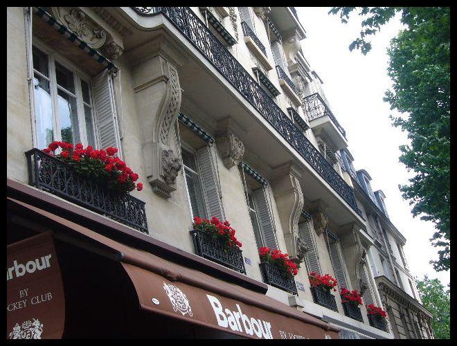 ■窓(パリ)_a0008105_026127.jpg