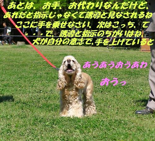b0067012_2165764.jpg