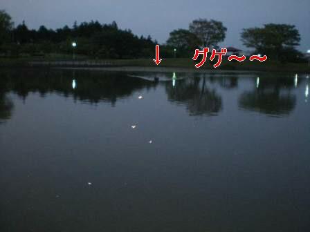 f0133723_2125722.jpg