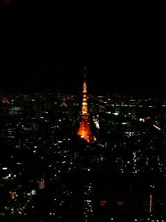 東京の夜景_a0103940_3333716.jpg