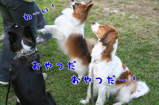 d0013149_10160.jpg