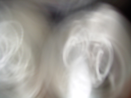 d0049553_2232636.jpg
