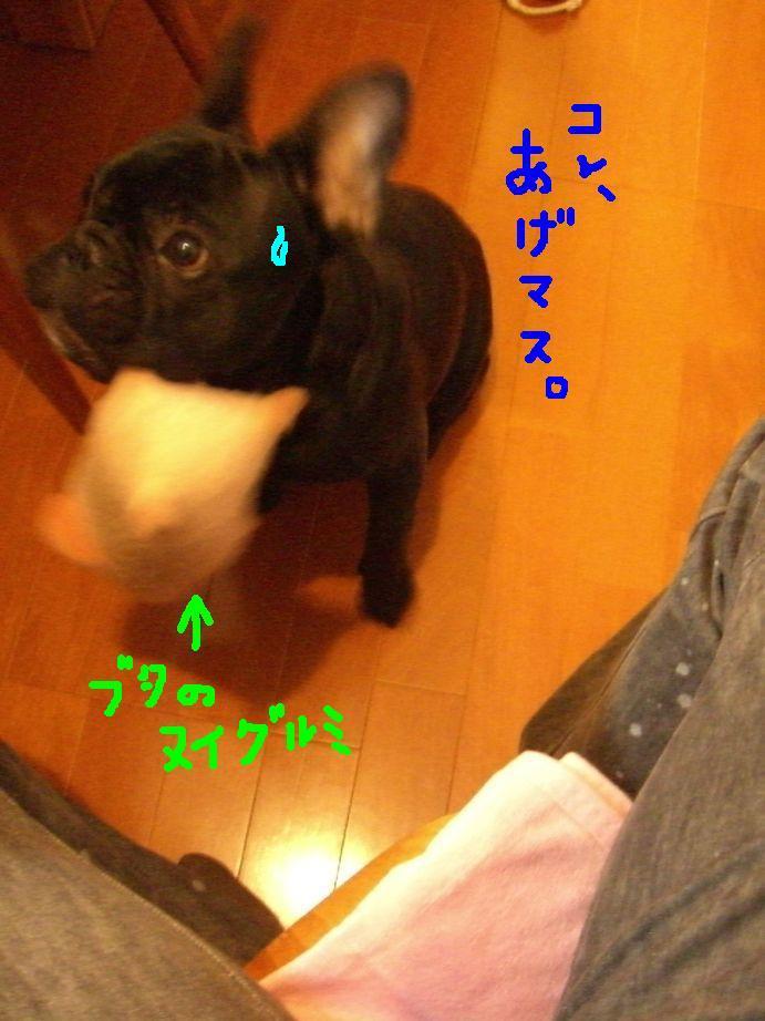 c0113109_21451372.jpg
