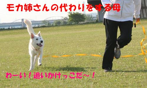 f0121712_13361872.jpg
