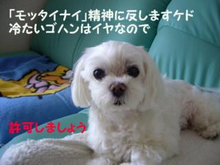 f0005727_16295271.jpg