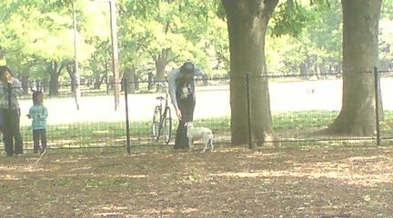 代々木公園のドッグランへ_c0099133_1644691.jpg