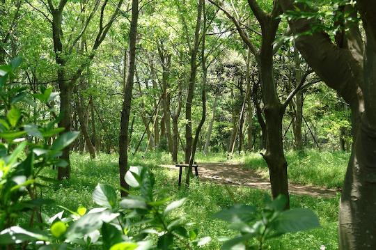 鎌倉 1_d0123156_22264423.jpg