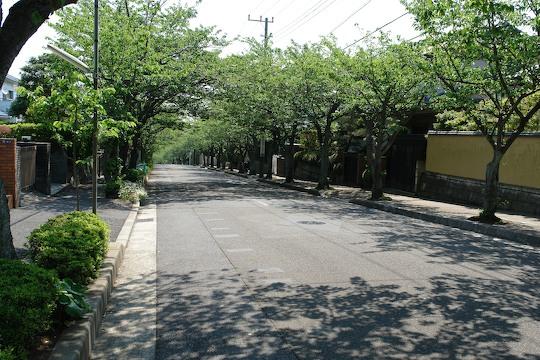 鎌倉 1_d0123156_22271661.jpg