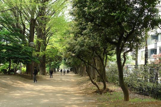 新宿御苑 1_d0123156_22491450.jpg