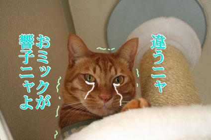 f0101903_16485042.jpg