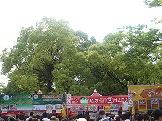 タイ・フェスティバル2007_c0025217_912139.jpg