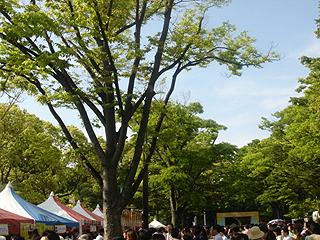 タイ・フェスティバル2007_c0025217_9194230.jpg
