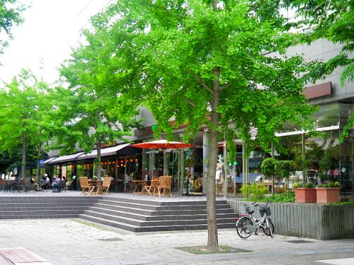 人口の水辺の脇に、カフェが2件並んでいます。外にはテーブルと椅子が置いてあり、ここで休憩をするわんこ連れが多いです。緑の木が点在し、雰囲気はパリのカフェ?みたいに見える光景です。