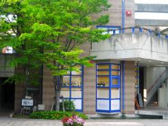 こちらの青い窓枠のお店はやはり飲食店のようです。どちらも緑の木々に映えて綺麗です。