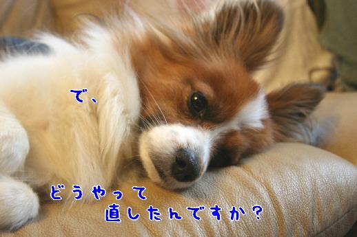 d0013149_0241635.jpg
