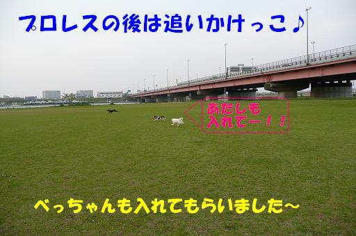 f0121712_11214024.jpg