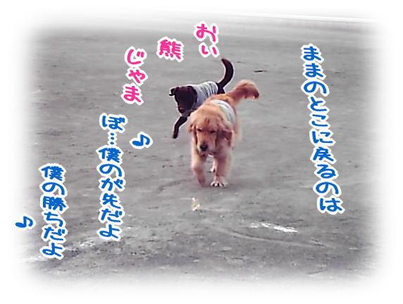 f0109418_2442224.jpg
