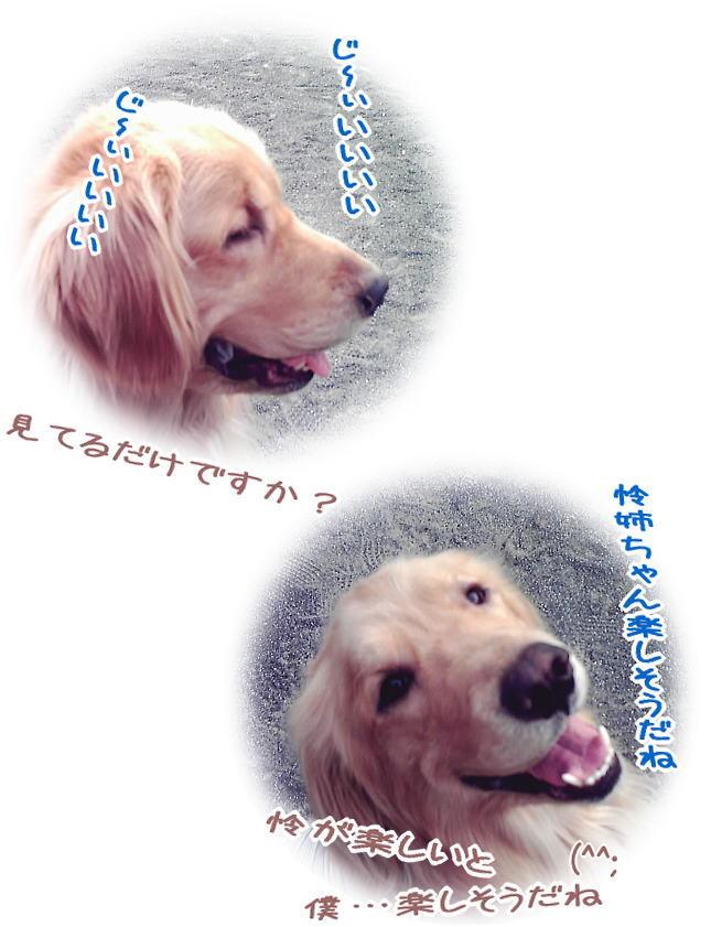 f0109418_2462192.jpg