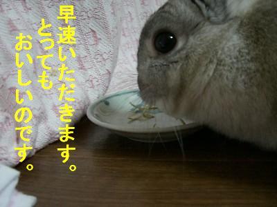 f0104057_22345775.jpg