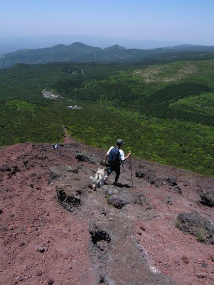 5月14日 ツツジはまだかいな~♪in Mt.Takachiho_c0049299_1229577.jpg