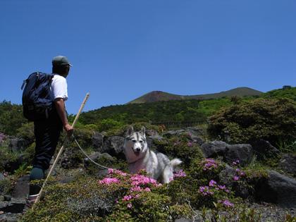 5月14日 ツツジはまだかいな~♪in Mt.Takachiho_c0049299_12301534.jpg