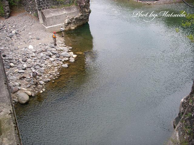 橋の下の大きなアマゴ_c0095801_16414247.jpg