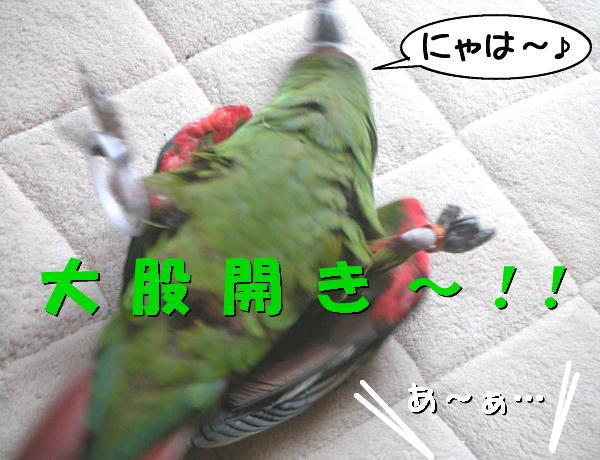f0132055_0192581.jpg