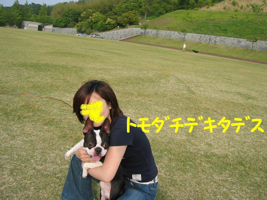 a0080889_0165564.jpg