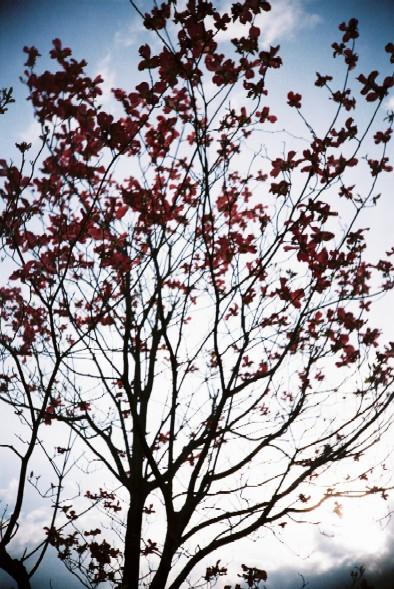 f0113427_20104112.jpg
