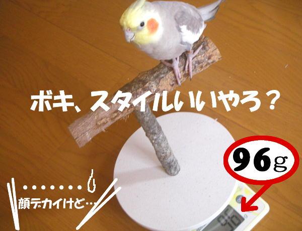 f0132055_017953.jpg