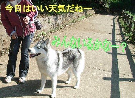 f0112407_1545186.jpg