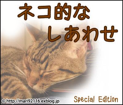 f0027944_1021527.jpg