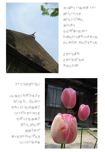 f0017458_0521295.jpg