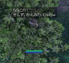 b0107404_13564869.jpg