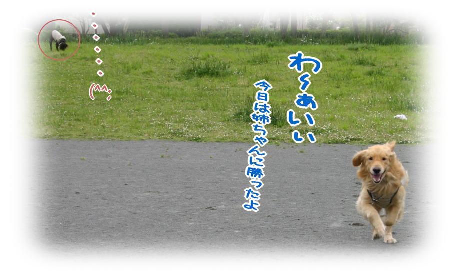 f0109418_1474078.jpg