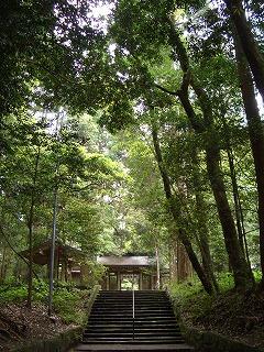 狭野神社の杉並木_f0105533_23455924.jpg