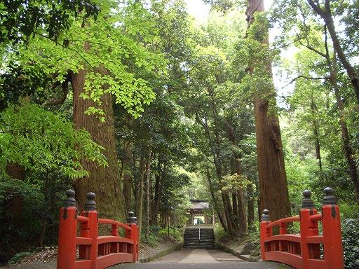 狭野神社の杉並木_f0105533_23514563.jpg