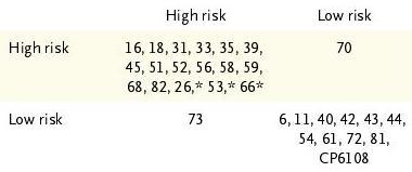 外陰部、膣部病変へのHPVワクチン有効性_a0007242_938257.jpg