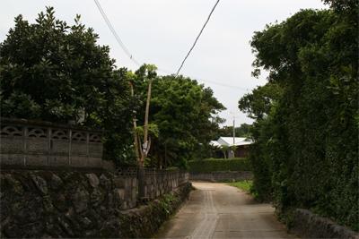 喜界島:道_d0028272_8564921.jpg