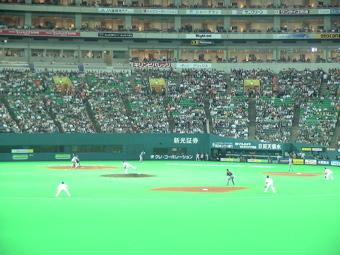 野球観戦_d0016397_4163920.jpg
