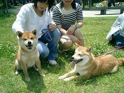 やっぱ犬!?_d0050503_22224880.jpg