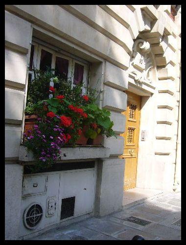 ■窓(パリ)_a0008105_525452.jpg