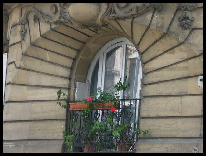 ■窓(パリ)_a0008105_5276.jpg