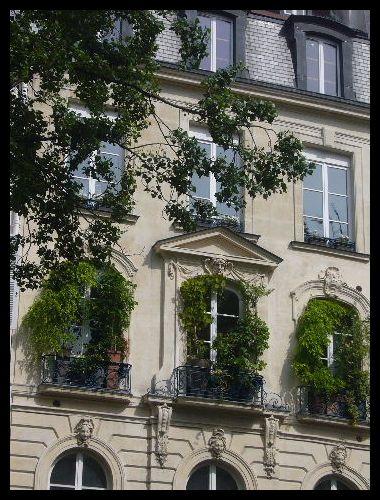 ■窓(パリ)_a0008105_531446.jpg