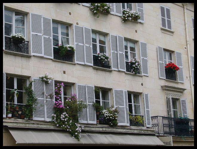 ■窓(パリ)_a0008105_534429.jpg