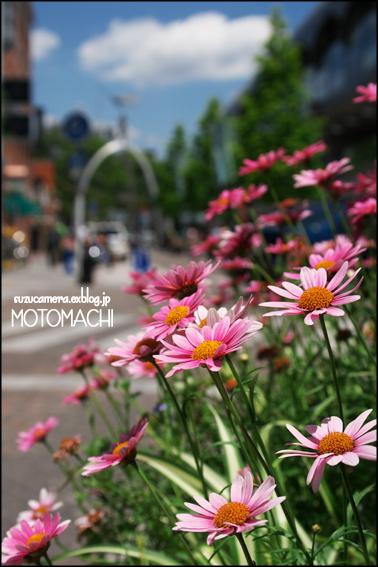 MOTOMACHI_f0100215_2221047.jpg