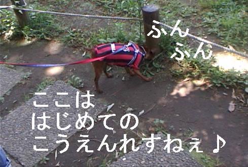 f0123589_17333192.jpg