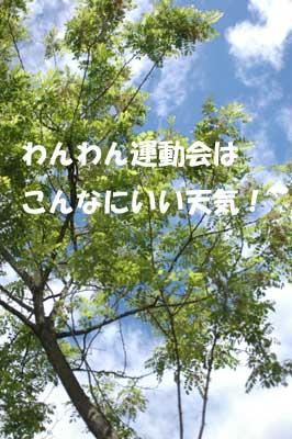f0129214_11263866.jpg